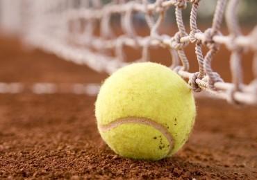 Tennisball c Championkids